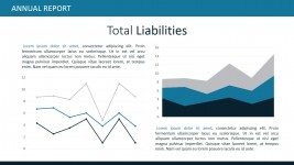 Total Liabilities PowerPoint Templates