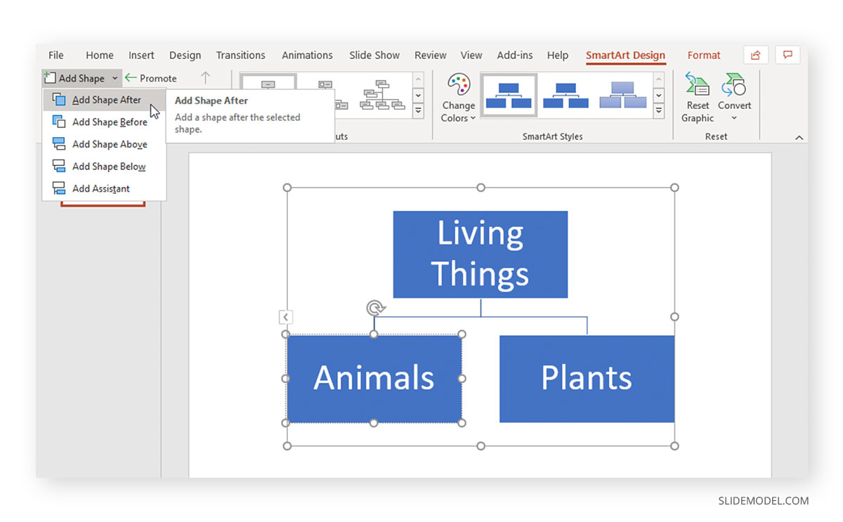 Concept Map PowerPoint Example