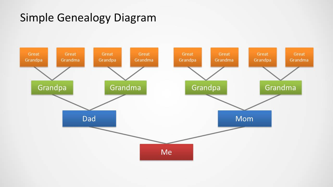 genealogy tree diagram for powerpoint - slidemodel