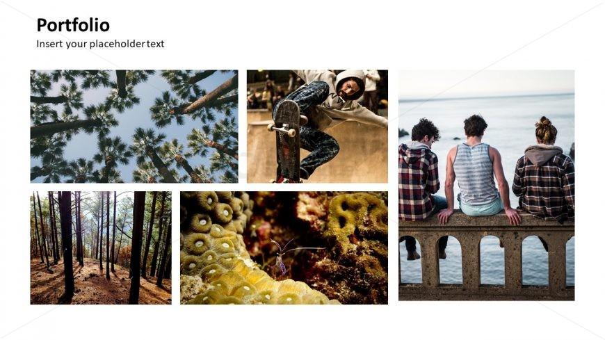 PPT Nature Photos Template