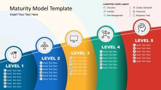 5 Level Maturity Model