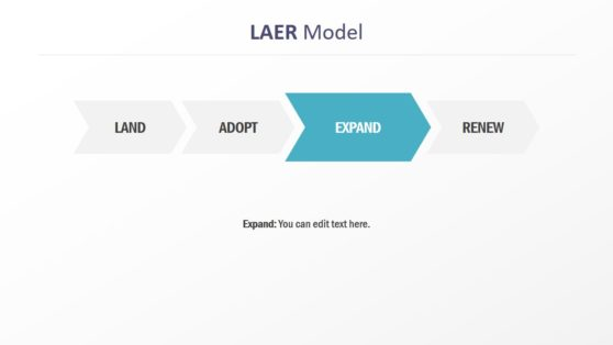 Expand Stage of LAER Model PPT