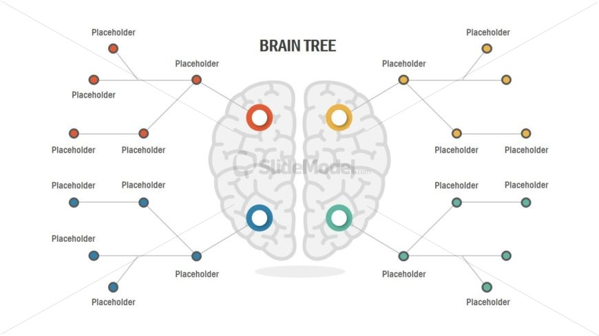 brain illustration concept powerpoint