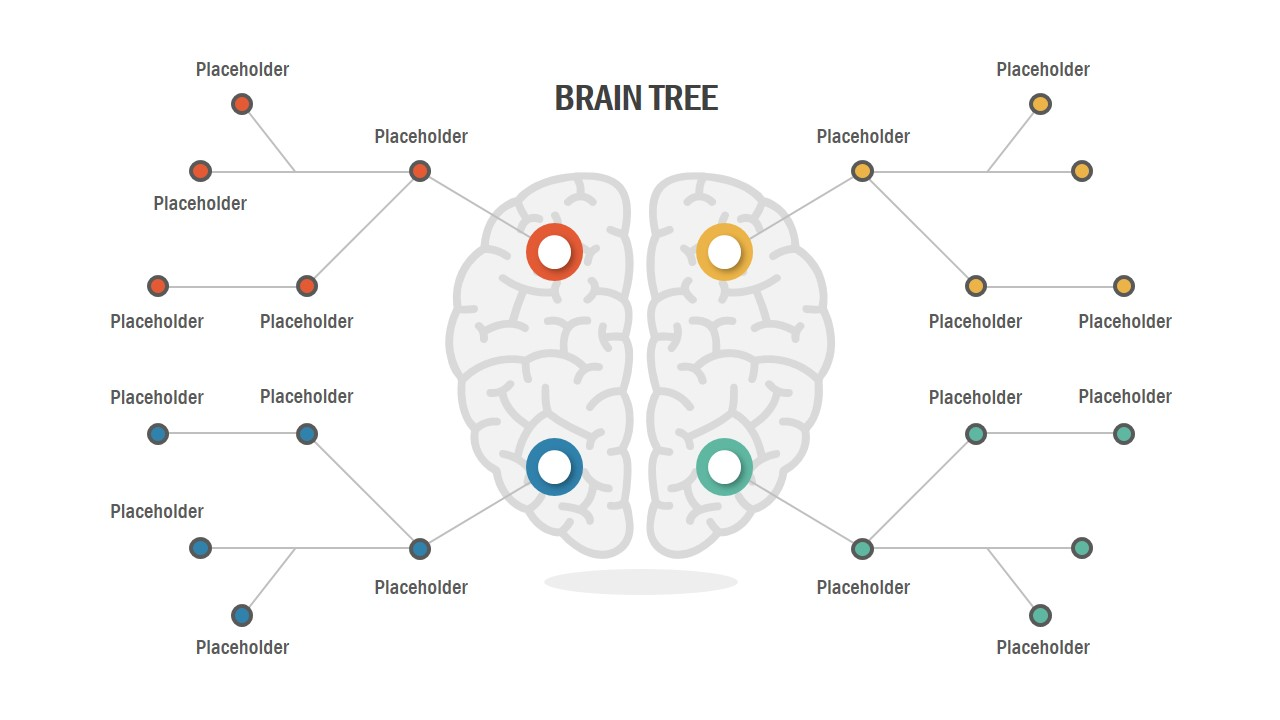 Infogrpahic Brain Tree Diagram