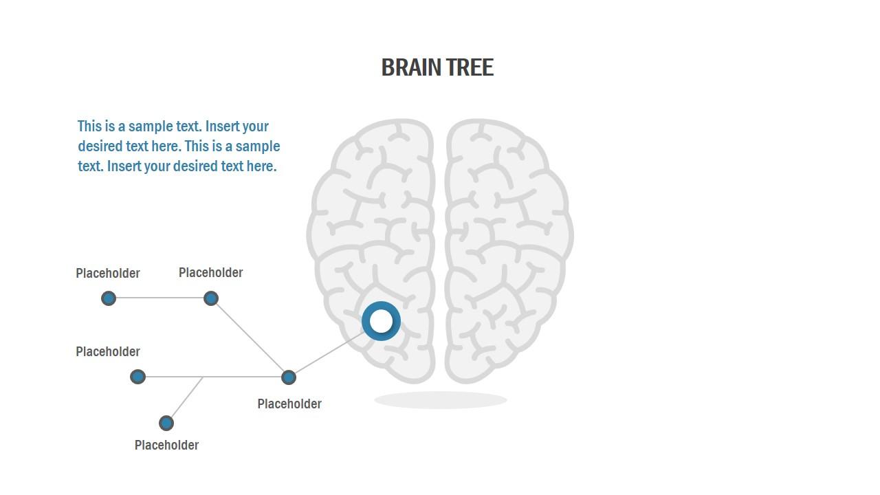 Flat Brain Shape Illustration