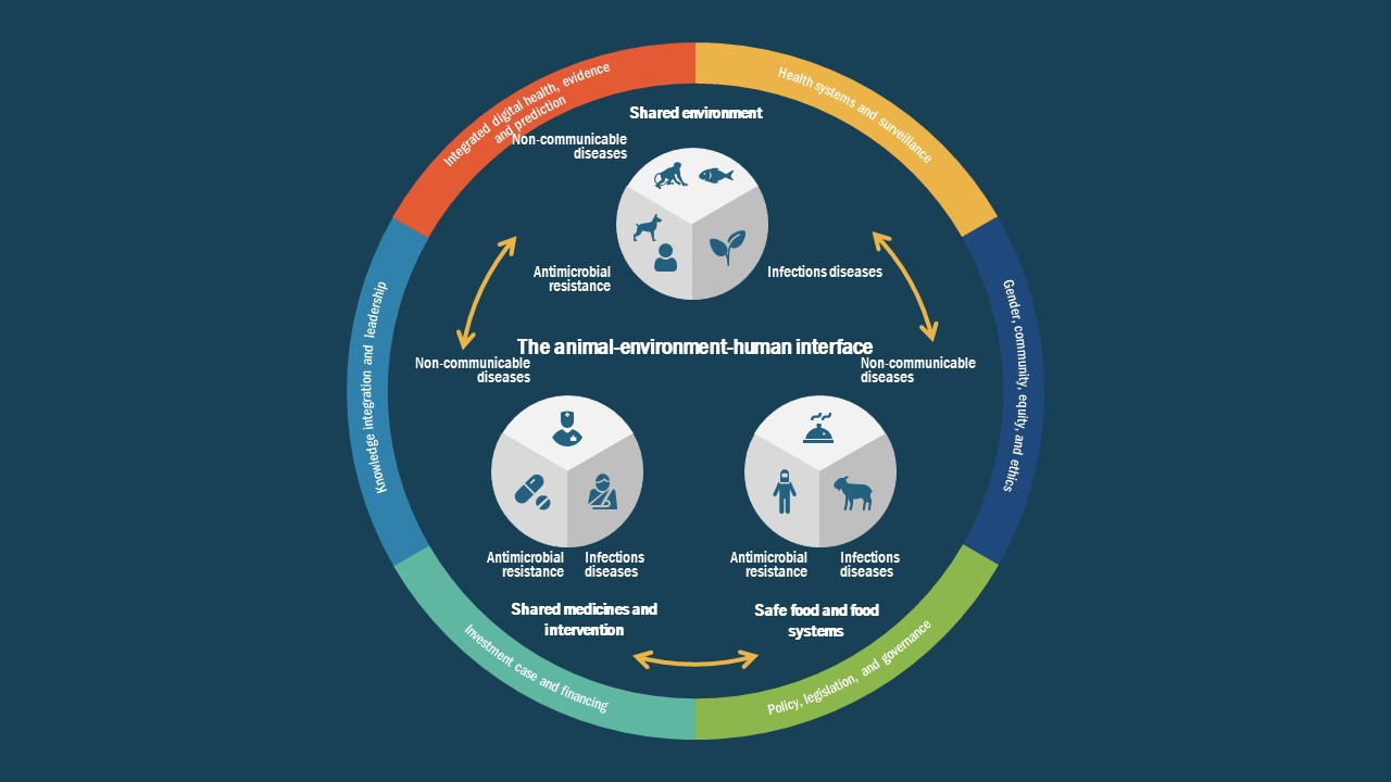 PPT One Health Approach Model
