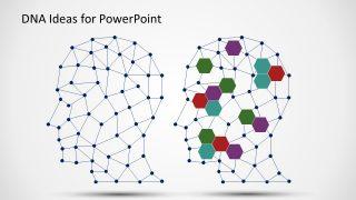 Network DNA Structure Presentation