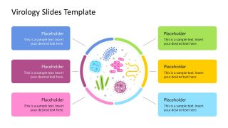 Presentation of Virology Microscopic View
