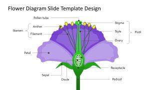 Flower Label Diagram Template PPT