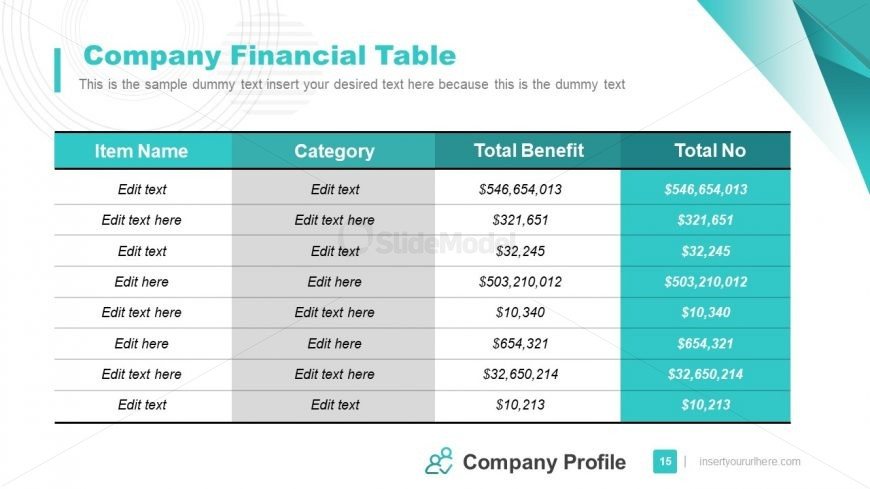 Table of Financial Company Information