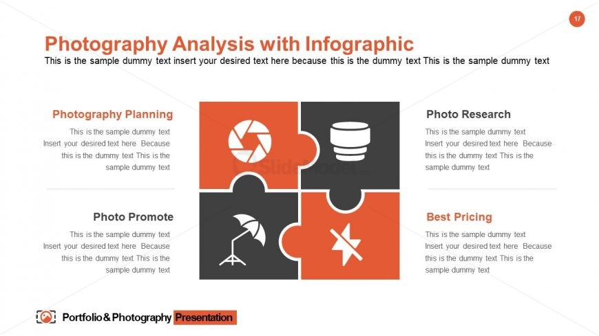 Portfolio & Photography Analysis Template