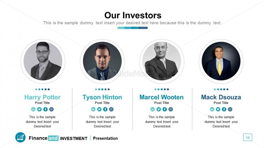 4 sections of investor's portfolio