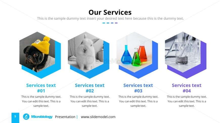 Company Services Science Research PPT