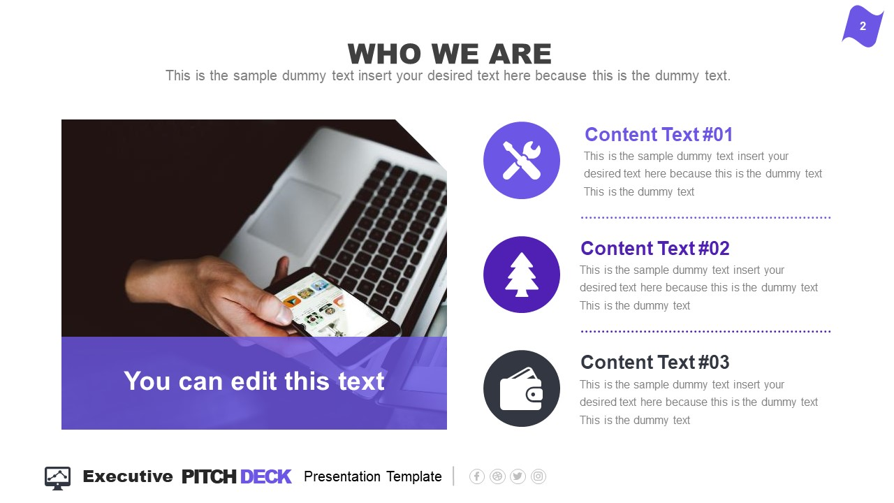 Who We Are Executive Pitch Deck