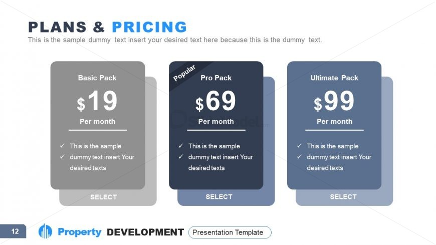Presentation of Pricing and Plans