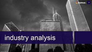 Business Case Study Template Industry Analysis