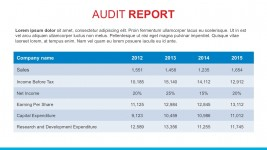 Company Annual Audit Report PowerPoint Template