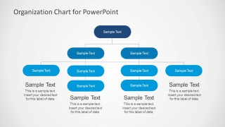 Functional Organizational Chart for PowerPoint