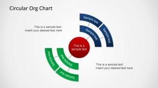 Circular Organizational Chart PowerPoint Shape
