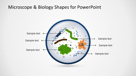 Biology PowerPoint Slide Design
