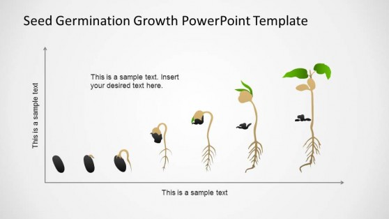 PowerPoint Timeline in Cartesian Axis with Seed Germination Process