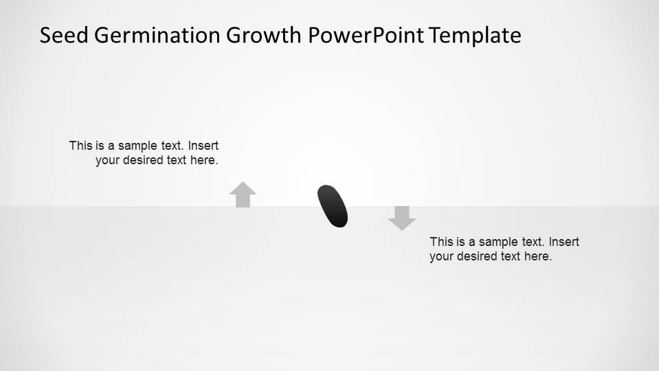 black bean seed powerpoint shape