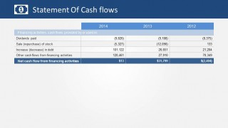 Statement of Cash Flows Financing Activities