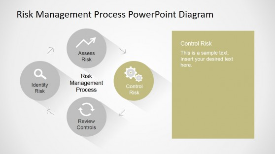 Control Risks Descriptive Slide for Risk Management Cycle