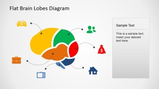 Color coded cross sectional brain lobe map with icons