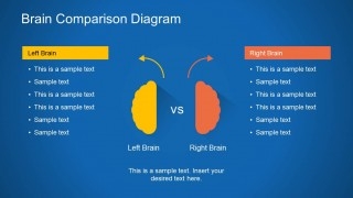 Right Brain & Left Brain PowerPoint Slide Design
