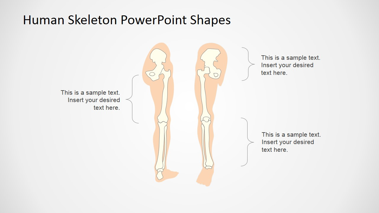 Human skeleton powerpoint shapes slidemodel powerpoint templates for medical presentation templates for presenting the human bones toneelgroepblik Image collections