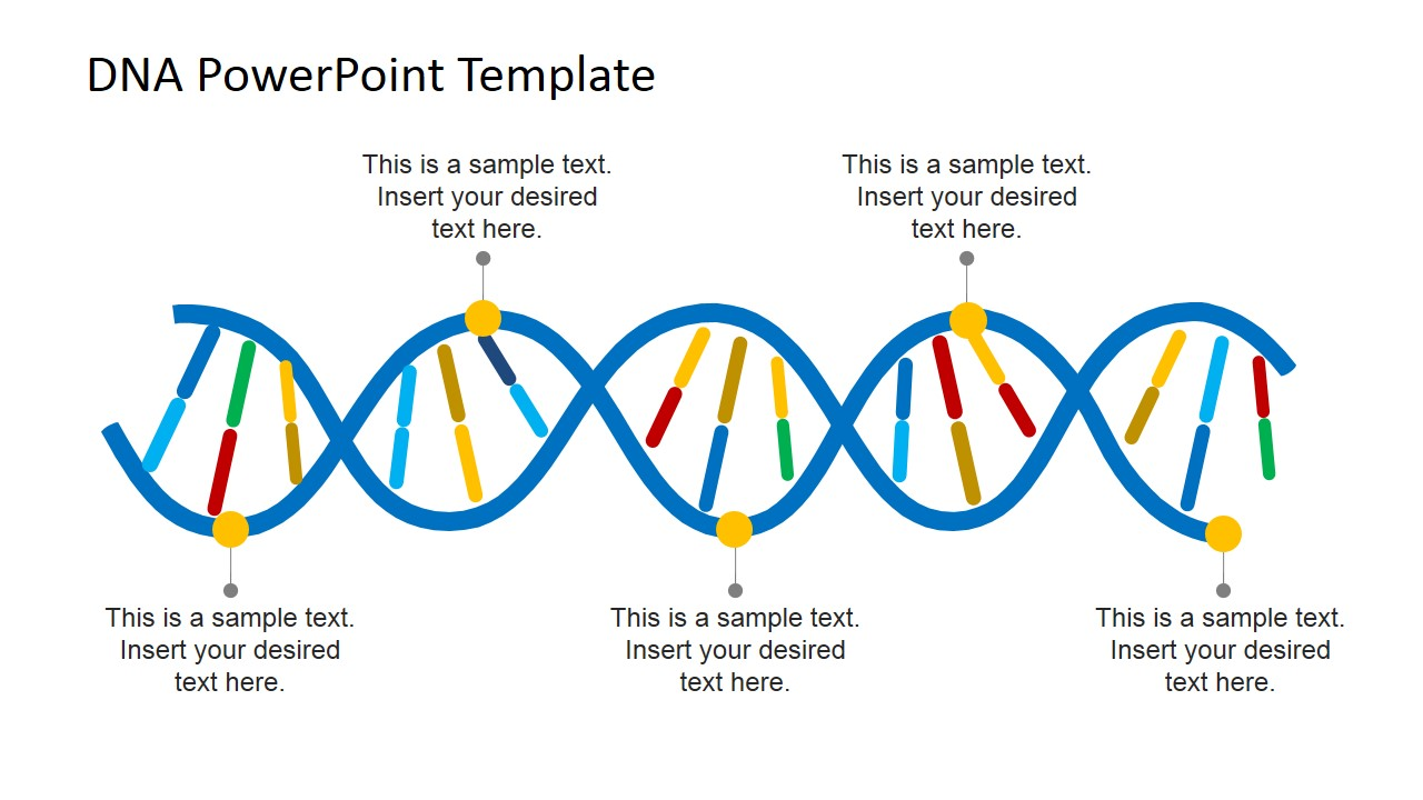 Dna strands powerpoint template slidemodel for What is a template strand