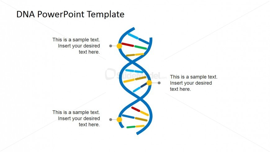 Vertical Picture of DNA Strands for PowerPoint