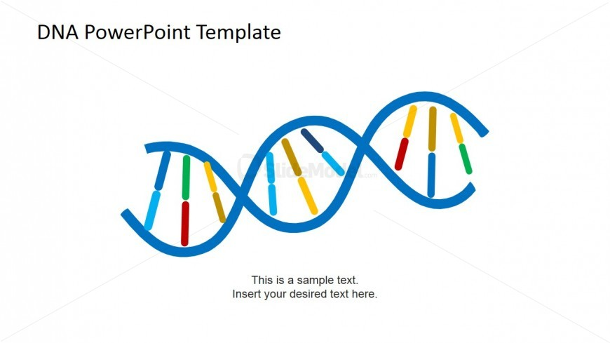 DNA PowerPoint Slide Shapes for Presentations