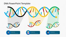 Demographic DNA Strands PowerPoint Templates
