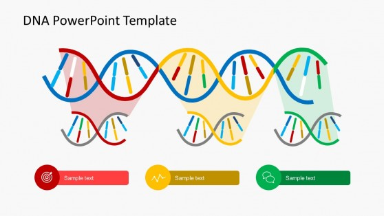 DNA Code Strands PowerPoint Shape Templates