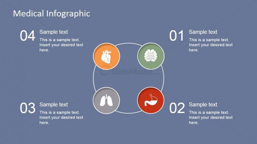 Medical Circular Diagram with Vital Organs
