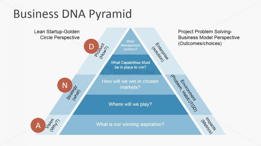 PowerPoint Flat Business DNA Pyramid