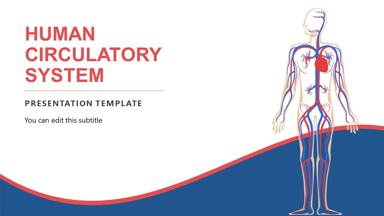 Editable Templates for Circulatory System
