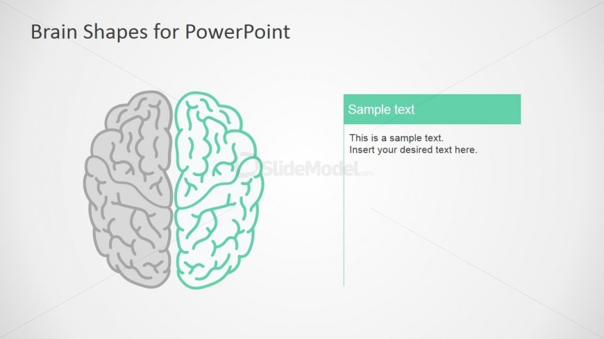 Righ Brain Infographics For PowerPoint