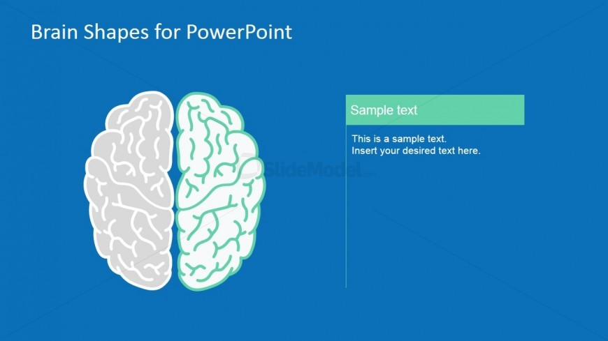 Editable Human Brain PowerPoint Slides