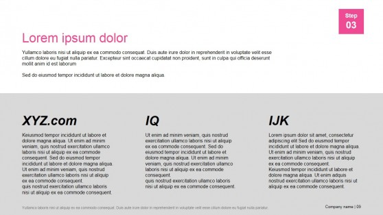 Presentation Template Company Clients Description Section