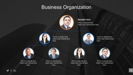 Company Management Profile PowerPoint Templates