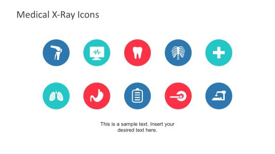 Editable Medical X-Ray Icons and Shapes