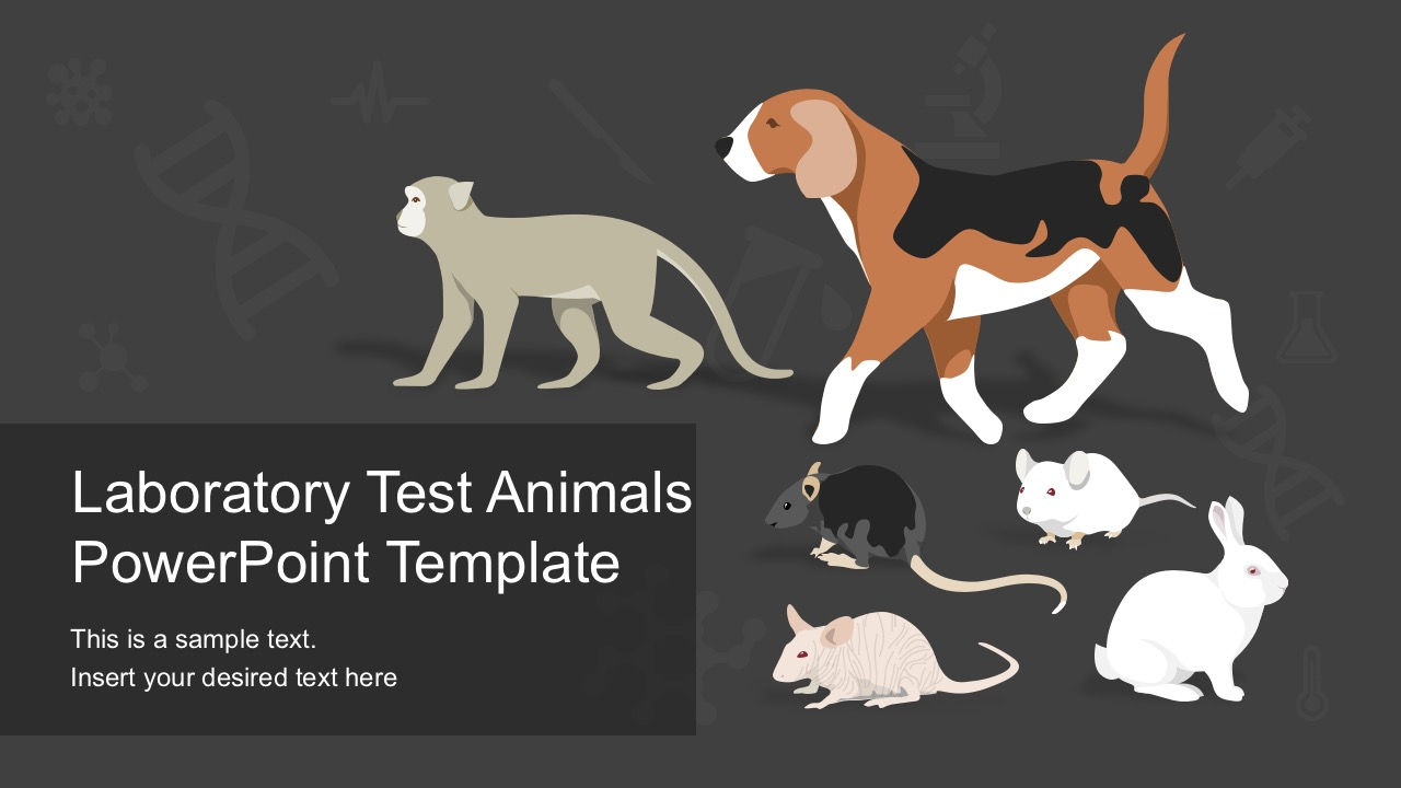 Laboratory Test Animals PowerPoint Vectors