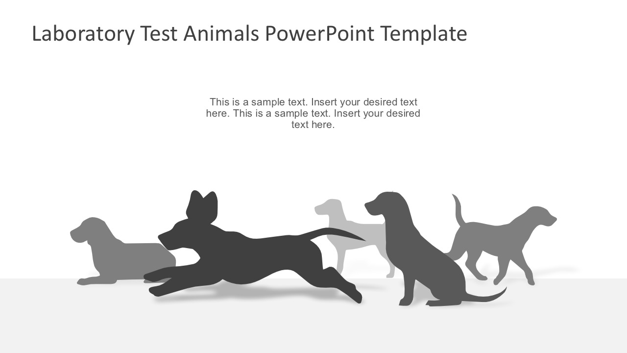animal product testing lab experiment slidemodel