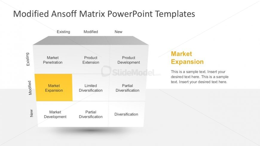 Ansoff Market Product Diversification Template