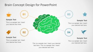 Brain Concept Diagram PowerPoint Templates