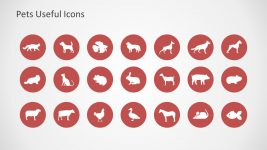 Farm Animal Infographic Icon