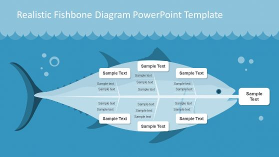 Visual Illustration of Fishbone Diagram Slide